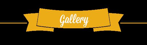 gallery Arca del Blues